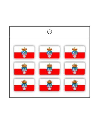 PEGATINA GOTA DE RESINA RECTANGULO CANTABRIA 9 UND 16 X 11 MM 997 001